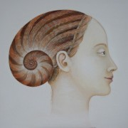 """ Coiffe d'escargot "" Sold"